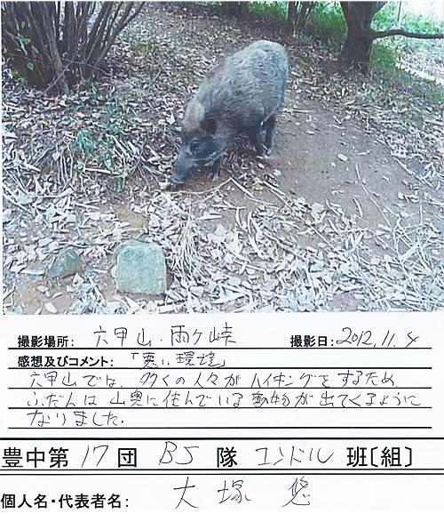 T17_Otsuka.jpg